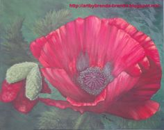 Title:  Oriental Poppy Oil on canvas Size: 16 x 20 inches (40 x 50 cms.) For Sale:  $90.00 USD plus shipping.