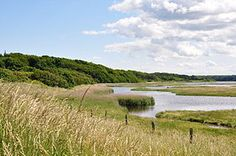 Naturschutzgebiet Geltinger Birk (2014)