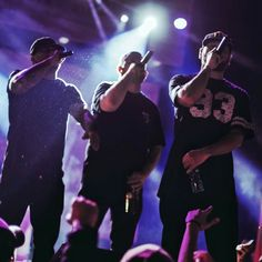 Rap Quotes, Mafia, Bugs, Concert, Beetles, Concerts, Insects