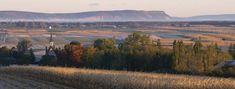 Landscape of Grand Pré, a UNESCO world heritage site, Situated in the southern Minas Basin of Nova Scotia, the Grand Pré marshland and archaeological sites constitute a cultural landscape bearing testimony to the development of agricultural farmland using dykes and the aboiteau wooden sluice system, started by the Acadians in the 17th century