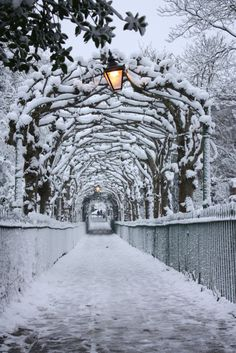 "luvchristmas: "" Active cozy winter/Christmas blog ❄️ """
