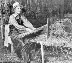 Old Pictures, Old Photos, Vintage Photos, White Tractor, Flax Plant, Working People, Farm Life, Holland, Folk