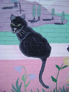 Kitty Graffiti