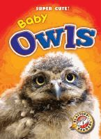 Developed by literacy experts for students in kindergarten through grade three, this book introduces baby owls to young readers through leveled text and related photos