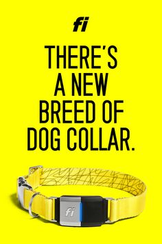 The Next Generation of Smart Dog Collars is Here. 3 Months Battery Life, Location & Activity Tracking, and the World's First Collar on LTE. Training Your Dog, Potty Training, Training Collar, Agility Training, Training Tips, Dog Agility, Security Training, Toilet Training, Training Videos
