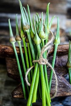 garlic scape pesto + other garlic and onion scape recipes Scape Recipe, Organic Garlic, Super Greens, Cooking Ingredients, Greens Recipe, Summer Bbq, Fruits And Veggies, Raw Food Recipes, Asparagus
