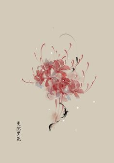十月份的生日花16~31号 | artistic青尘 - 原创作品 - 涂鸦王国插画 Chinese Drawings, Chinese Art, Japanese Prints, Japanese Art, Red Spider Lily, Natur Tattoos, Oriental Flowers, Art Asiatique, Hand Flowers