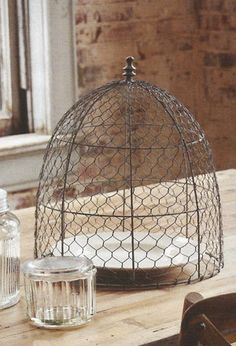 farmhouse musings: Chicken Wire Cloche - Traditionally used in gardens to protect small plants from birds and other critters, our Chicken Wire Cloche also makes an unconventional choice for a food cover. (pinner note: this would not protect food from flies)