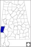 Choctaw County--The forestry industry has been the economic backbone of the county since its creation in 1847. It is home to the Choctaw National Wildlife Refuge, an important resting place for migrating birds.