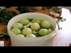 Квашеные,бочковые помидоры - YouTube