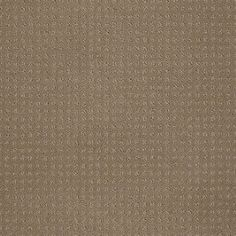 Color: 00703 Perfect Beige In Savannah - EA024 Shaw ANSO Nylon Carpet Georgia Carpet Industries