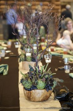 Rustic Fruit and Vegetable Centerpiece with Wooden Bowls and Manzanita Branches at Camp Loughridge