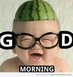 he Random Vibez gets you the Best Good Morning Memes for you to share, and I am sure that it will get the most needed smile on your face. Funny Good Morning Images, Good Morning Picture, Good Morning Good Night, Morning Pictures, Good Morning Quotes, Morning Pics, Nice Picture, Good Morning Best Friend, Morning Humor