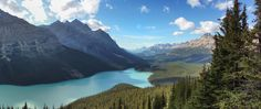 the beauty of Peyto - panorama by Stefan  on 500px