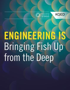Discover how scientists engineered a way to study new fish species from the ocean's twilight zone. Academy Of Sciences, Assistive Technology, Scientists, Special Education, Twilight, Engineering, Bring It On, Study, Ocean