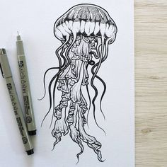 Jellyfish for Jeff?You can find ink drawings and more on our website.Jellyfish for Jeff? Jellyfish Drawing, Jellyfish Tattoo, Jellyfish Art, Jellyfish Decorations, Animal Drawings, Tattoo Drawings, Tattoos, Pen Art, Doodle Art
