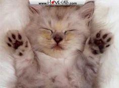Iam so sleepy