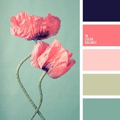 love this color scheme. Navy in a main room (like bedroom or living room), dark pink/light pink in a little girl's room or bathroom, light green or light blue in the guest rooms or bathrooms.