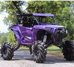 AWESOME RZR (Love purple)
