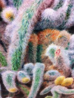 Saatchi Cactus….Gallery Weekends