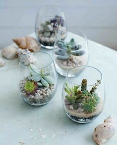 20 Beautiful Tiny Gardens That Fit In The Palm Of Your Hand Flowers, Plants & Planters