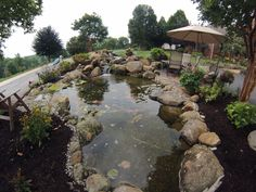 Amazing Large Scale Pond Project