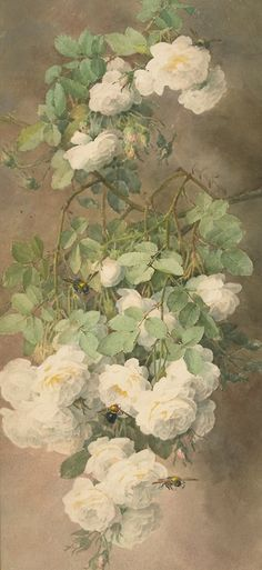 white roses and bees