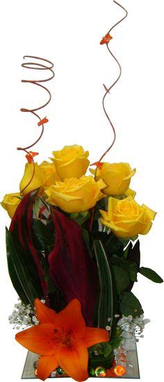 Base, Plants, Yellow Roses, Floral Arrangements, Flowers, Plant, Planets
