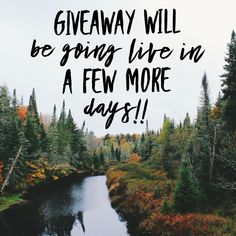 There's a massive giveaway coming to you very soon! Follow the FB page and keep an eye out for the upcoming posts. Fall Quotes, Mom Quotes, Softball, Baseball, Awesome Designs, Fb Page, Mom Shirts, Cool Tees, Personal Development