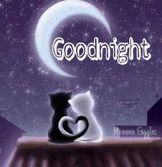 have a good night love