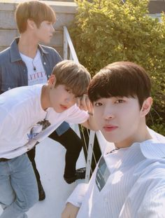 Wanna one pics ( South Korean Boy Band, Korean Boy Bands, Jinyoung, Jaehwan Wanna One, Cry A River, Nu Est Minhyun, You Are My World, Produce 101 Season 2, Ong Seongwoo