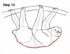 Sloth Drawing 13