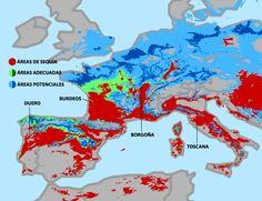 Qué lugares del mundo producirán los mejores vinos en 2050