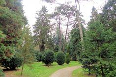 In het Pinetum zijn ruim honderd soorten coniferen verzameld uit alle werelddelen. Het werd aangelegd tussen 1933 en 1939. De keizer had met name in de eerste jaren zelf een werkzaam aandeel. Het Pinetum behoorde tot de hoogtepunten bij een bezichtiging van het park.