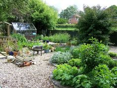 Little greenhouse in a sweet herb garden.
