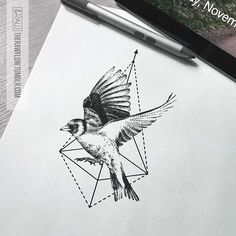 Custom dotwork Goldfinch design for @thecynthiact  #tattoo #tattoodesign #goldfinch #bird #birdtattoo #goldfinchtattoo #art #illustration #drawing #rawflow #skinque