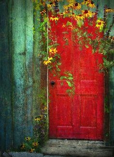 The Vintage Red Door in the Garden.