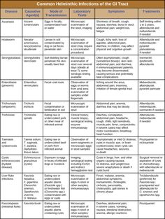 Table titled: Helminthic Infections of the GI Tract. Columns: Disease, Pathogen, Signs and Symptoms, Transmission, Diagnostic Tests, Antimicrobial Drugs. Ascariasis; Ascaris lumbricoides; Shortness of breath, cough, nausea, diarrhea, bloody stool, abdominal pain, weight loss, fatigue, worms in stool or sputum; Ingestion of eggs in fecally contaminated food and water; Microscopic observation of eggs in stool sample, X-rays, ultrasounds or MRIs; Albendazole, mebendazole. Hookworm; Necator…
