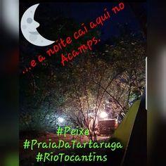 #Peixe #PraiaDaTartaruga #Rio Tocantins #IlhaDeserta