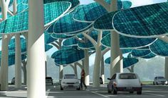 Solar forest parking lot.