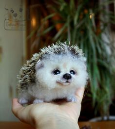 I literally sighed when I saw how cute this little guy was. I want one.