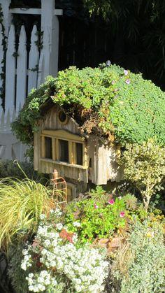 Garden at Cambria Pines Lodge, Cambria, California
