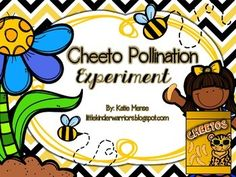 """This is a fun, hands on and extremely engaging Science Experiment to supplement your insect, bug, bee and/or plant unit. Students will use their bee finger puppets to fly over to the flower that contains """"pollen"""" (Cheetos). When the students touch the Cheetos, the dust clings to their fingers (the bees' legs) and then they fly to the next flower to pollinate it."""