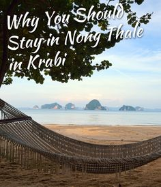 Why You Should Stay in Nong Thale When Vacationing in Krabi