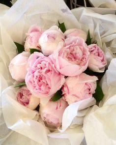 Wedding flowers by Jude Bastion.