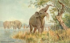 Category:Animals of the Prehistoric World (first serie) - Wikimedia Commons