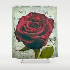 Paris Rose  Shower Curtain by doc4art - $68.00