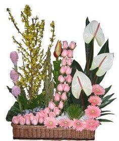 Jardinera Elízabeth. Cascada de rosas con anturios, gerberas y tulipanes