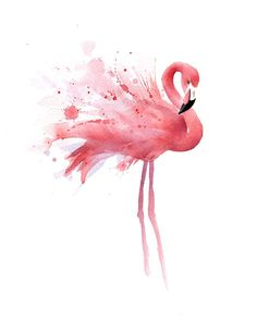 "Amazon.com: ""Flamingo"" Watercolor Art Print Signed by Artist DJ Rogers: Posters & Prints"