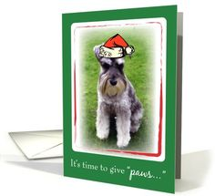 Time to give Paws at Christmas card - Schnauzer dog in santa hat.
